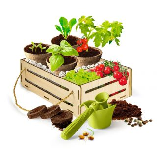 Jardin et Potager - Play For Future