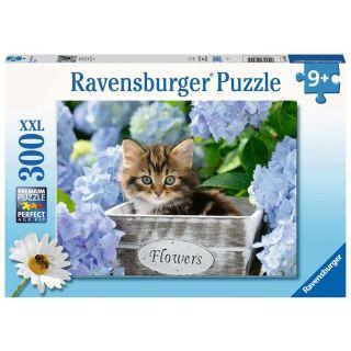 Puzzle 300 p XXL - Petit chaton